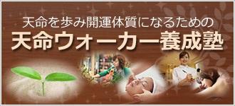tenmei2012_1